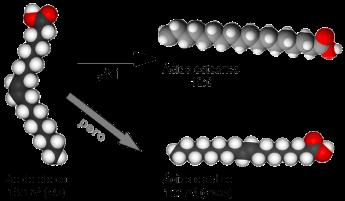 hidrogenacion-ind