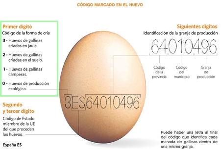 Código marcado en el huevo.