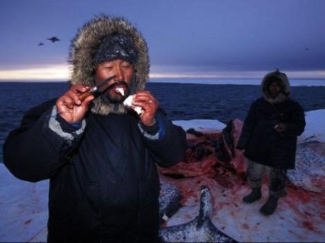 2.-Inuit-comiendo-ballena-500x375